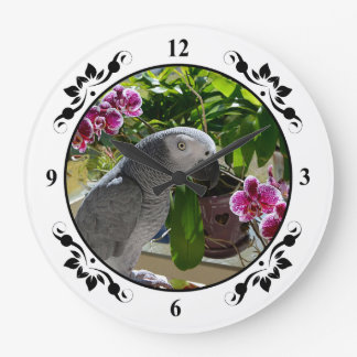 African Grey Parrot with Orchids Wall Clocks