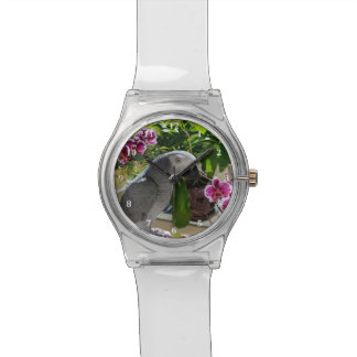 African Grey Parrot with Orchids Wrist Watch