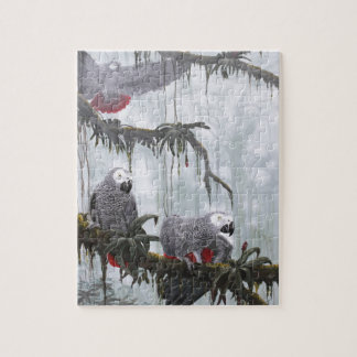 African Grey Parrots flying free Jigsaw Puzzle