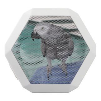 African Grey Pool Party White Boombot Rex Bluetooth Speaker