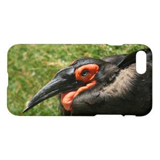 African Ground Hornbill iPhone 7 case