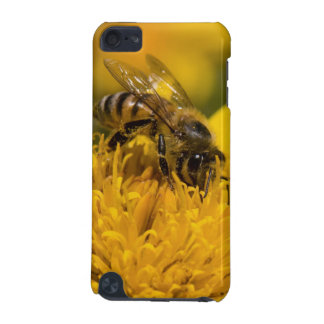 African Honey Bee With Pollen Sacs Feeding iPod Touch 5G Cover