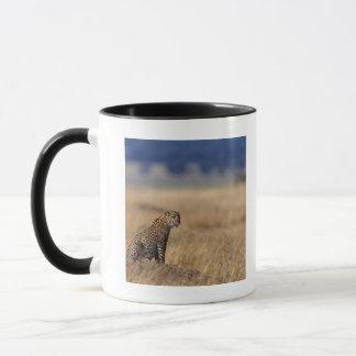 African leopard in grasslands , Kenya , Africa Mug