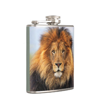 African Lion 1 Hip Flask