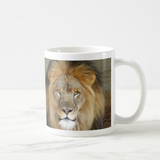 african-lion-b-2 basic white mug