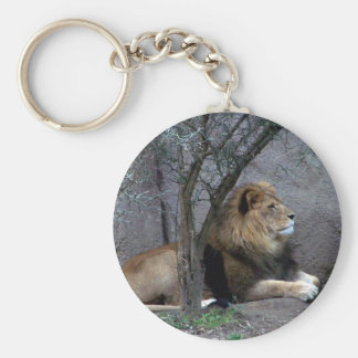 african lion by tree basic round button key ring