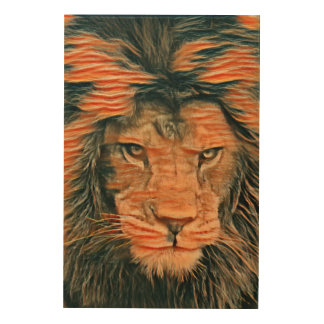 African Lion Colored Chalk Art Wood Canvases