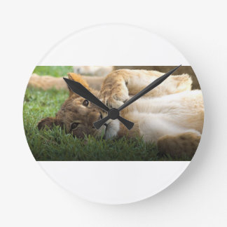 African Lion Cub Round Clock