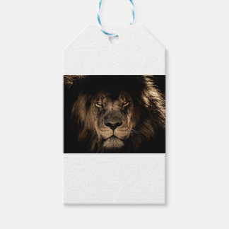 African Lion Gift Tags