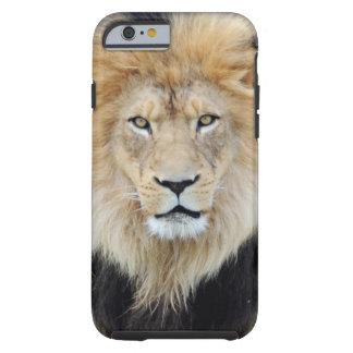 African Lion iPhone 6 case Tough iPhone 6 Case
