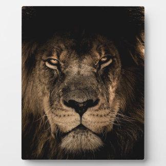 African Lion Plaque