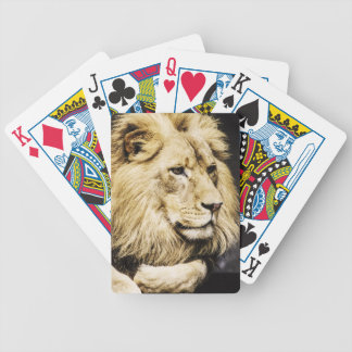 African Lion playing cards