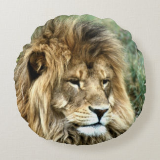 African lion round pillow