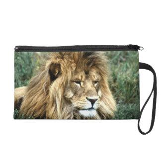 African lion wristlet clutches