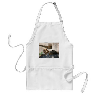 African Lions Adult Apron