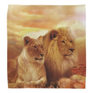 African lions - safari - wildlife bandana