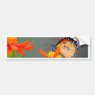 African Monarch butterfly on orange flower Bumper Sticker