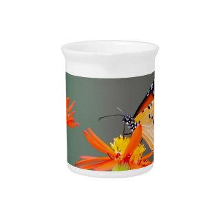 African Monarch butterfly on orange flower Pitcher