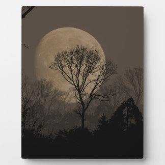 african moon plaque
