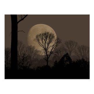 african moon postcard
