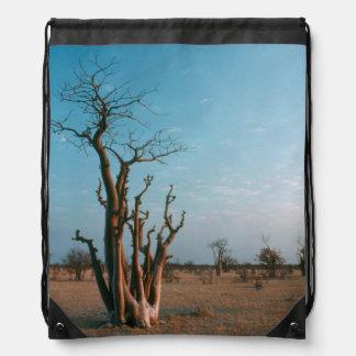 African Moringo Tree On Plain, Etosha National Rucksacks
