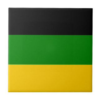 African National Congress ANC South Africa Small Square Tile