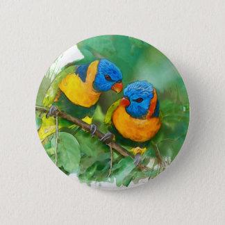 African parrots button