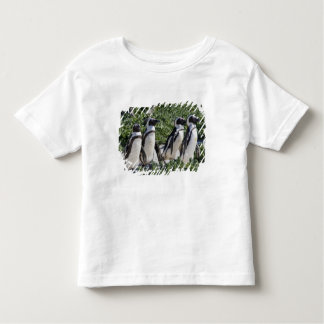 African Penguins, formerly known as Jackass Toddler T-Shirt