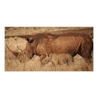 African Rhino mom and baby Customized Photo Card