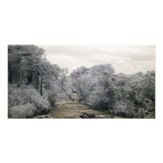 African river in infrared light picture card