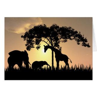 African safari sunset card