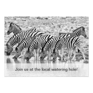 African Safari Zebra Funny Birthday Invitation