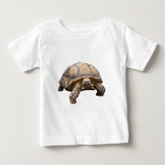 African spurred tortoise baby T-Shirt