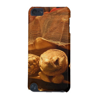 African Spurred Tortoise iPod Touch (5th Generation) Cases