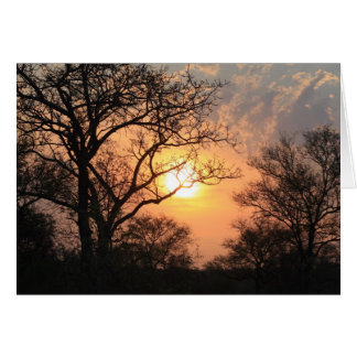 African Sunset - At the end of the day Greeting Card