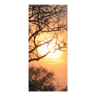 African Sunset - At the end of the day Custom Rack Card