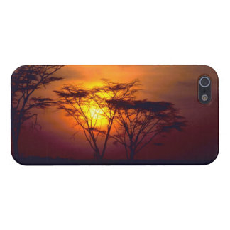 African Sunset - Savvy iPhone 5 Cover