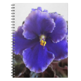 African Violet Blooming Notebooks