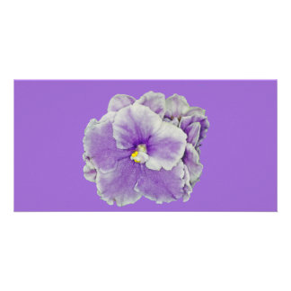 African Violet Purple Photo Greeting Card