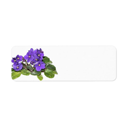 African violet return address label