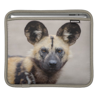 African wild dog iPad sleeve