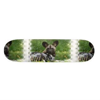 African Wild Dog Photo Skateboard
