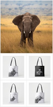 African Wildlife Fundraising Gifts