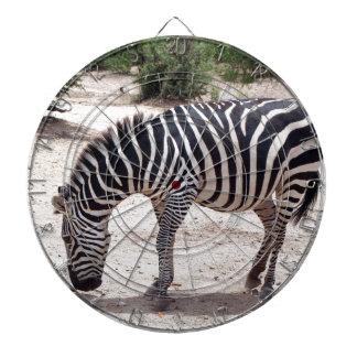 African zebra at the zoo dartboard