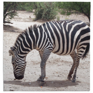 African zebra at the zoo printed napkins