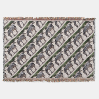 African zebra at the zoo throw blanket