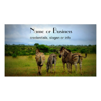 African Zebras in a Natural Setting Business Card Template