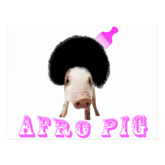 Afro Pig Post Cards