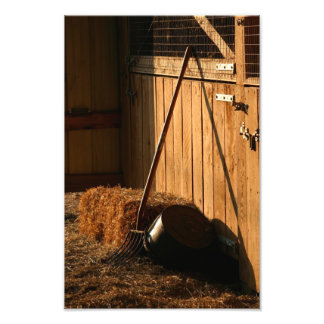 After Evening Chores Photo Print