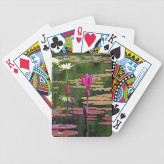 After Forever Bicycle Playing Cards